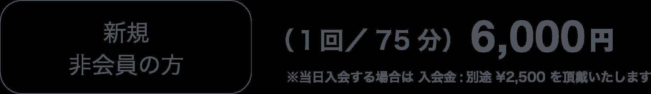 新規非会員の方(1回/75分)6,000円