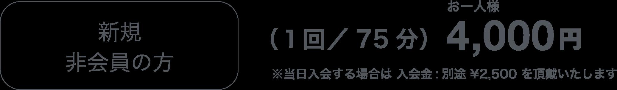 新規非会員の方(1回/75分)4,000円